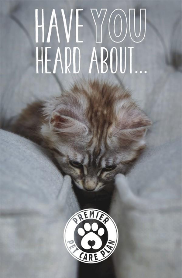 Image New Pet Healthcare Plan!